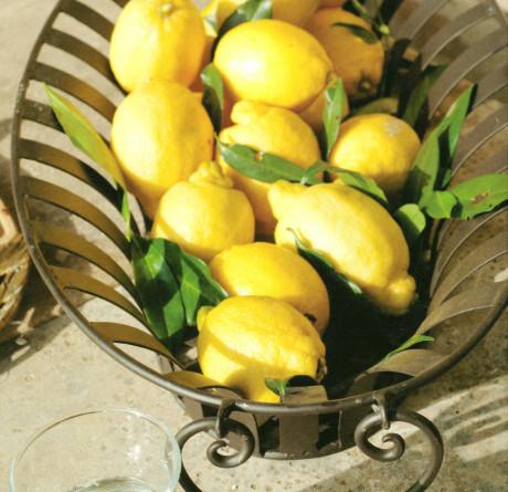 Cassetta Eisenkorb Kreta Zitronen VARIA
