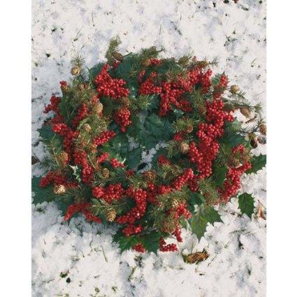 Dekokranz Tannenzapfen Ilex Beeren rot grün Winter