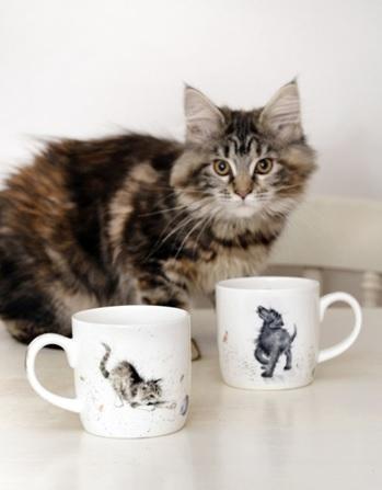 Royal Worcester WRENDALE DESIGNS 6 Hund Katze Maus La Cassetta