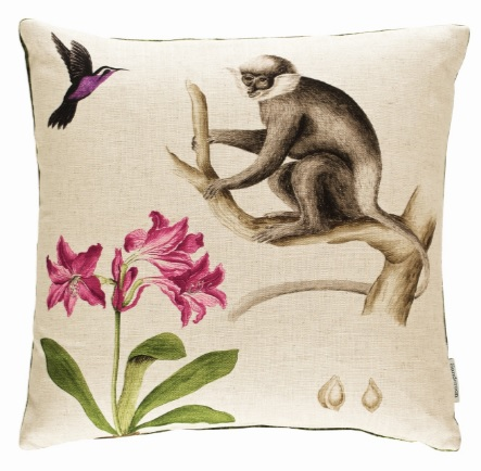 SANDERSON UK CAPUCHINS boysenberry 4 Affen Papageien Exotische Frucht Blumen