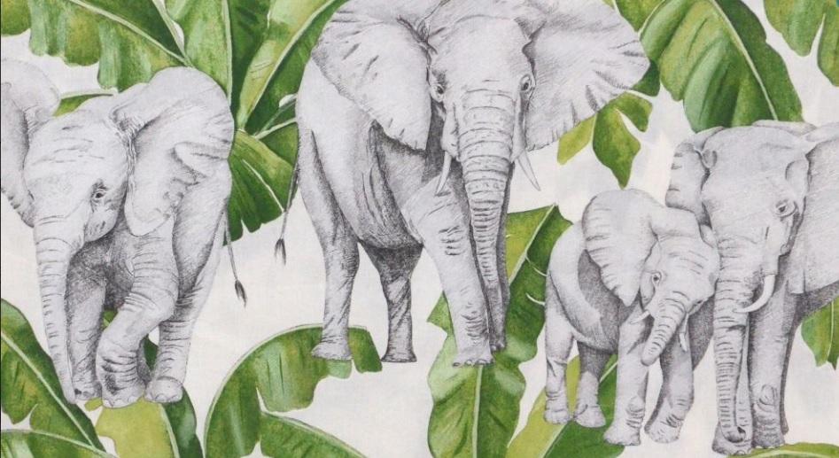 Thevenon Meterstoff La Cassetta IVOIRE vert mousse Elefanten Palmen 2