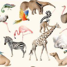 THEVENON Meterstoff Tous au zoo exotische Tiere Zoo Flamingo Strauß Kamel Zebra Papagei La Cassetta 3