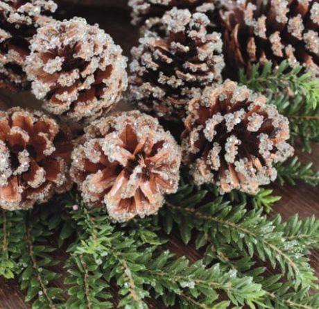 Dekokranz Tanne Zapfen Glitter Eis Winter Weihnachten klein La Cassetta 2