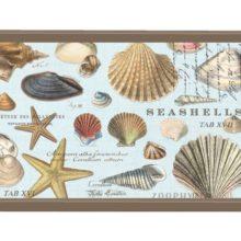 Tablett MICHEL DESIGN WORKS klein SEASHELLS maritim Muscheln Lack Decoupage La Cassetta