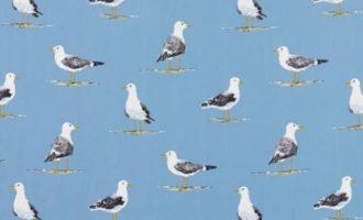 SANDERSON UK Shorebirds marine 1 Strandvögel Möwen blau maritime Stoffe online kaufen La Cassetta