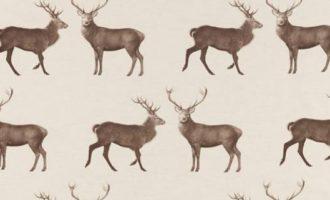 SANDERSON UK EVESHAM DEER linen chalk 1 Meterstoff Elysian Kollektion Hirsch La Cassetta online kaufen